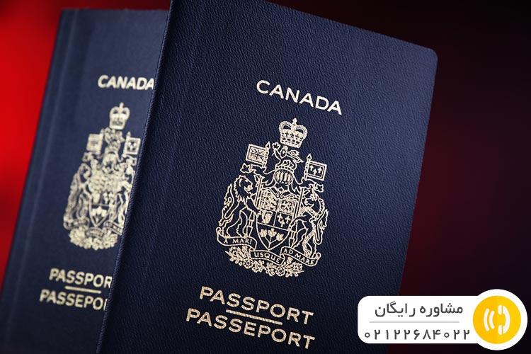 مجوز کار ویزای استارتاپ کانادا