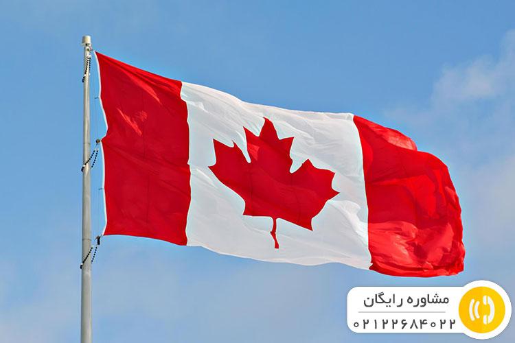 حل مشکلات استارتاپ در کانادا